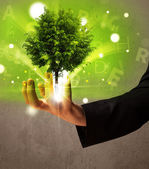 Glowing tree growing in the hand of a businessman — Stock Photo
