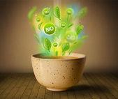 здоровое био зеленый плита продовольствия — Стоковое фото