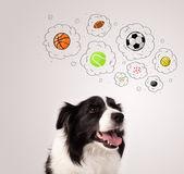 Söt hund med bollar i tankebubblor — Stockfoto