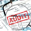 Tax Audit — Foto de Stock