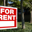For rent — Stock Photo #13826104