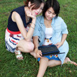 Two beautiful girl on a laptop computer outdoors. Lay on the gre — Stock Photo #28075299
