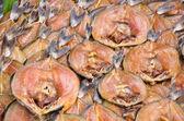 Dried fish thai style — Stock Photo
