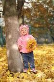 Niña en el parque otoño — Foto de Stock