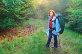 Hiking in the forest — Stock Photo