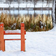 Stock Photo: Winter water scape