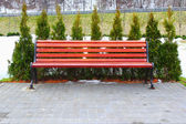 Red bench and cypress — Stock Photo
