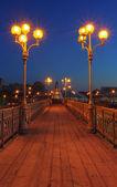 The bridge — 图库照片