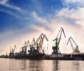 Dock cranes — Stock Photo