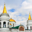 Saviour's Transfiguration Cathedral — Stock Photo #27366145