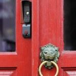 Lion doorknob — Stock Photo #29473833