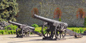 Cannons of the castle — Stock Photo