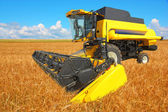 Combine harvester on a wheat field with a blue sky — Stock Photo