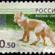 Stock Photo: RUSSIAN-CIRC2008: stamp printed in RussiFederation, s