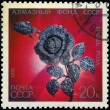 USSR - CIRCA 1971: A Stamp printed in USSR shows Brooch - Rose f — Stock Photo