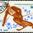 USSR-CIRC1980: stamp printed in USSR, dedicated XIII Win — Stock Photo #22602367