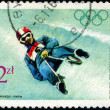POLAND - CIRC1968: Winter Olympics 1968. Descent to sledge, ci — Stock Photo #22622791