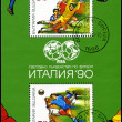 BULGARIA - CIRCA 1990: A post stamp printed in Bulgaria, shows f — Stock Photo