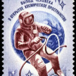 RUSSIA - CIRCA 1977: Stamp printed in USSR (Russia), shows astro - Stock Photo