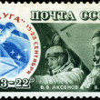 USSR - CIRCA 1976: A Stamp printed in USSR, shows a astronauts c — Stock Photo #23069974