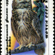 USSR - CIRCA 1990: A stamp printed in USSR showing owl, circa 19 — Stock Photo