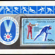 USSR-CIRCA 1982: The postal stamp printed in USSR shows winter s — Stock Photo