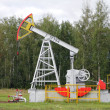 Oil pumpjack. Oil industry equipment. — Stock Photo