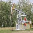 Stock Video: Oil pump working in forest. Oil industry equipment.