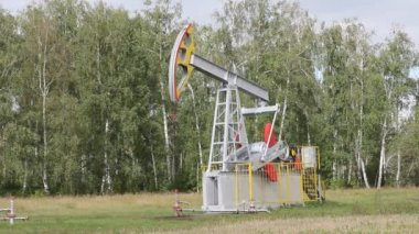 Oil pump working in the forest. Oil industry equipment. — Stock Video