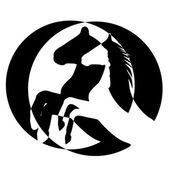 Rearing up horse vector silhouette — 图库照片