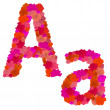 Flower alphabet Characters A-a — Stock Vector