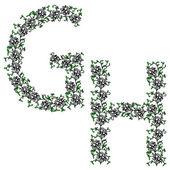 Hand drawing ornamental alphabet. Letter GH — Stock Vector