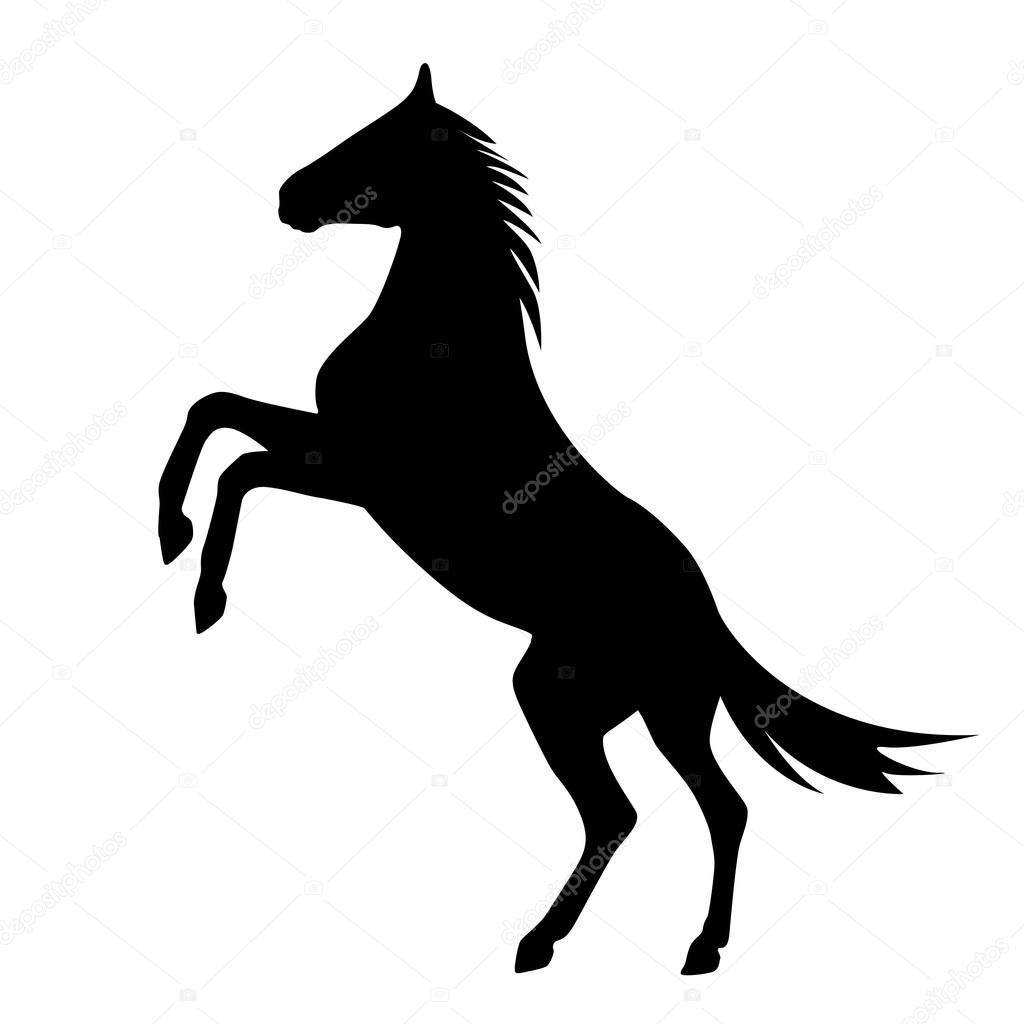 Rearing up horse vecto...