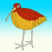 Eurasiska curlew, fågel. vektor illustration. — Stockvektor