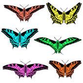 Wektor zestaw pięknych motyli. — Wektor stockowy