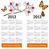 Stylish calendar with flowers and butterflies for 2013. — Vettoriale Stock