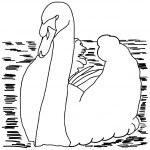Beautiful swan — Stock Vector #34515381