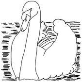 Beautiful swan — Stock Vector