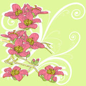 Tender twig blossoming orchids on a light background — Stock Vector