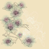 Tender twig blossoming orchids on a light background — Stockvector