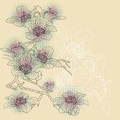 Orquídeas floreciente rama tierna sobre un fondo claro — Vector de stock