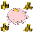 Pig piggy bank — Stock Vector