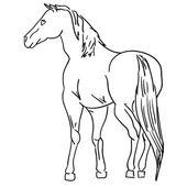 Black horse — Stock Vector
