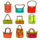 Vector collection of woman's accessories — Stock Vector