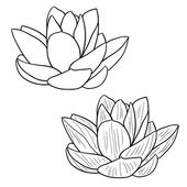 Oriental lotus - a flower Vector illustration. — Stock Vector