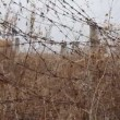 Barbed wires against sky. Steadicam, HD — Stock Video