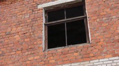 Mur de briques blanches. steadicam, hd — Vidéo