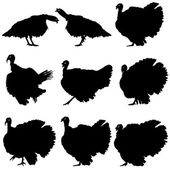 Silhouettes of turkeys. Vector illustration. — Stock Vector