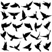 Concept of love or peace. Set of silhouettes of doves. Vector il — Wektor stockowy