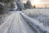 Winter wooden road — Stock Photo
